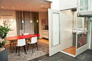 Qube-home-lift-in-living-space1